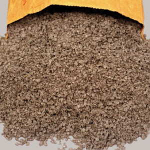 cellulose absorbent